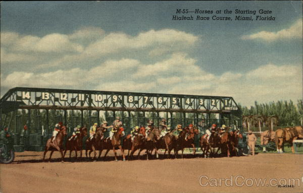 Hialeah Race Course - Horses at the Starting Gate Miami Florida