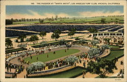 The Paddock at Santa Anita, Los Angeles Turf Club Postcard