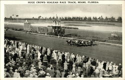 Crowd at Hialeah Race Track