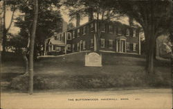 The Buttonwoods