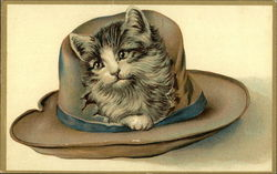 Kitten in a Hat