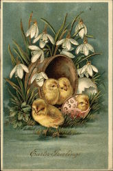 Easter Greetings - Chicks and Snowdrops