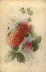 Five Strawberries and Three White Flowers