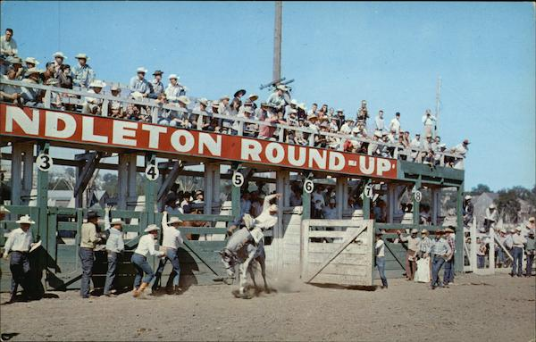 Pendleton Roundup - Hard Riding Cowboys try their luck astride Pitching Ponies Oregon