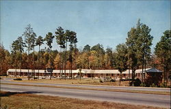 Homestead Motel Postcard