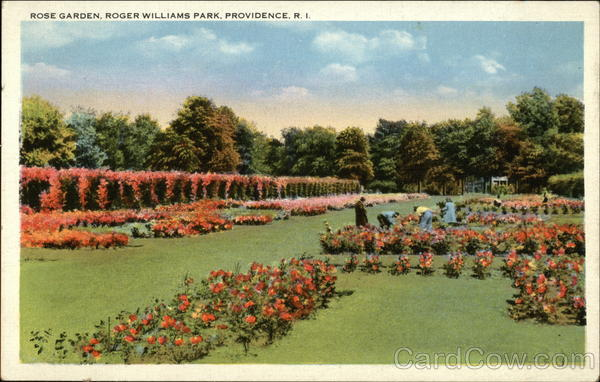 Rose Garden, Roger Williams Park Providence Rhode Island