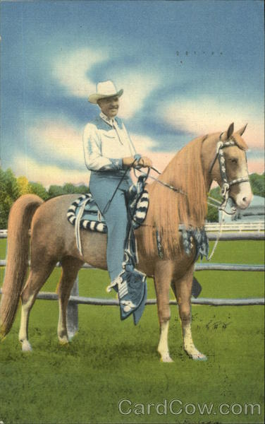A.H. Albee of Allen A Resort on his Tennessee Walking Horse, Treasure Allen