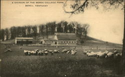 Berea College Farm
