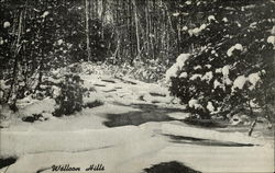 Walloon Hills