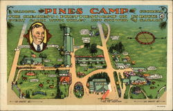Pines Camp