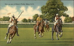 Polo on One of Aiken's Fields