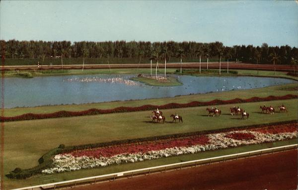 Parading to the Post on the Turf at Beautiful Hialeah Race Course Miami Florida