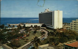 The Caribe-Hilton Hotel Postcard