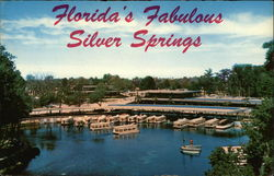 Florida's Fabulous Silver Springs