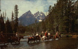 Horseback Riding in Grand Teton National Park, Wyoming Postcard