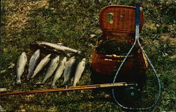 Eight Fish, Fishing Pole, Fishing Net and Creel
