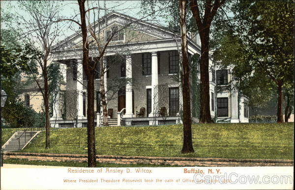 Residence of Ansley D. Wilcox Buffalo New York