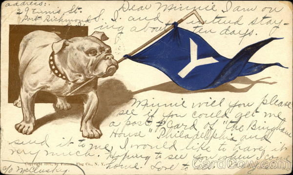 Yale Handsome Dan - Bulldog Holding Flag Universities
