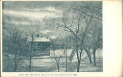Frog Pond and Court House In Winter