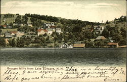 Georges Mills, Lake Sunapee