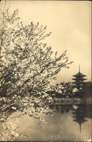 A picture showing a blooming tree, a lake and a pagoda
