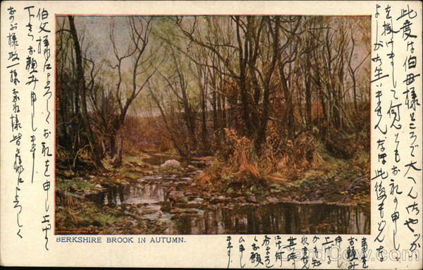 Berkshire Brook in Autum Japan