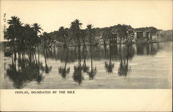Phylae, Inundated By The Nile