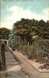 Near Tennis Court, Keaton Park Postcard