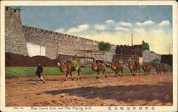 The Camel train and The Peping wall