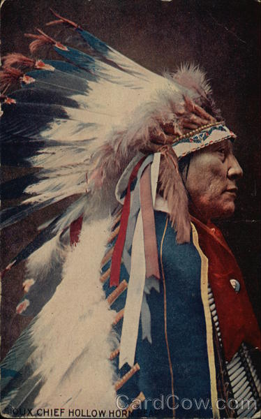 Sioux Chief Hollow Horn Native Americana
