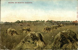 Scene in North Dakota