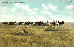 Harvesting Grain in North Dakota