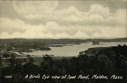 A Bird's Eye View of Spot Pond