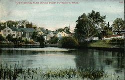 Town Brook - Alms House Pond