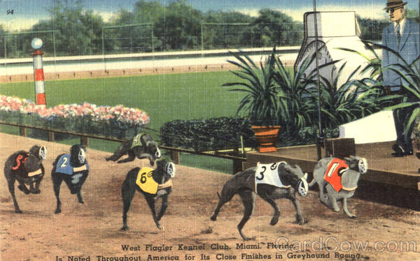West Flagler Kennel Club Miami Florida