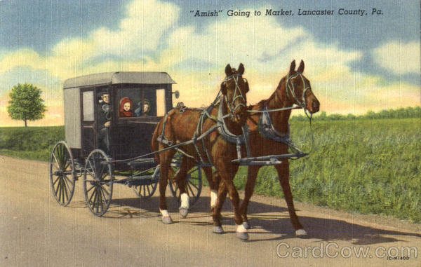 Amish Going To Market Lancaster Pennsylvania