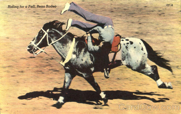 Riding For A Fall Reno Rodeo Rodeos