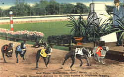 West Flagler Kennel Club