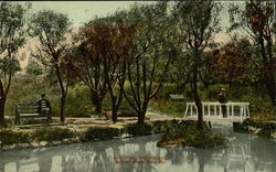 Lily Pond, Soldiers and Sailors Park