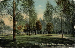 View in First Ward Park