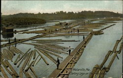 Sorting Logs On The Kennebec