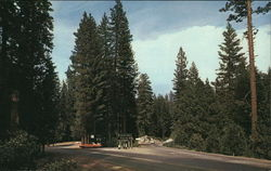 Scenic Mountain Highway, Pinecrest and Strawberry, California