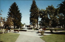 The Healsburg Plaza