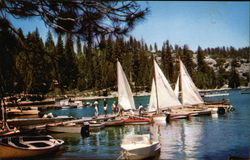 Sailboats at Pinecrest Lake