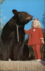 """Gentle Ben"" - Ivan Tors Animal Actors Training Academy"