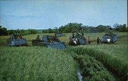 Army Tanks in the Rice Paddies, South Viet-Nam