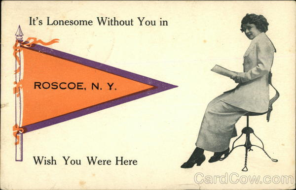 It's Lonesome Without you in Roscoe New York