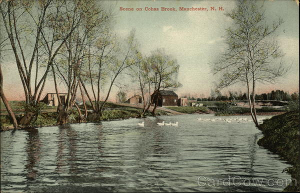 Cohas Brook Manchester New Hampshire