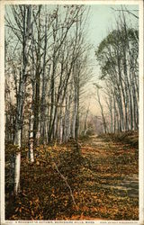 A Roadway in Autumn, Berkshire Hills, Mass
