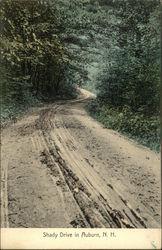 Shady Drive